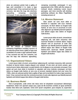0000063333 Word Template - Page 4