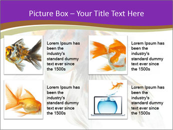 Beautiful Fish in Aquarium PowerPoint Template - Slide 14