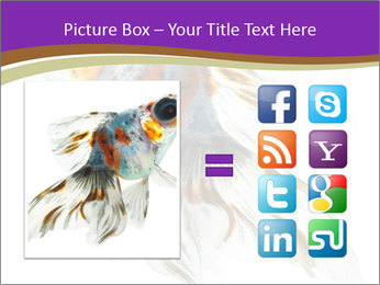 Beautiful Fish in Aquarium PowerPoint Template - Slide 21