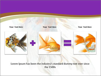 Beautiful Fish in Aquarium PowerPoint Template - Slide 22