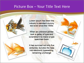 Beautiful Fish in Aquarium PowerPoint Template - Slide 24