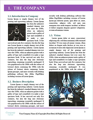 0000063353 Word Template - Page 3