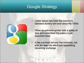 Real Model of Human Skull PowerPoint Templates - Slide 10