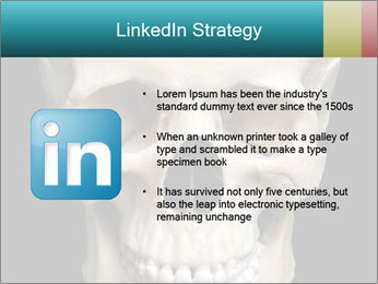 Real Model of Human Skull PowerPoint Templates - Slide 12
