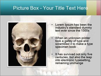 Real Model of Human Skull PowerPoint Templates - Slide 13