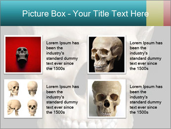 Real Model of Human Skull PowerPoint Templates - Slide 14