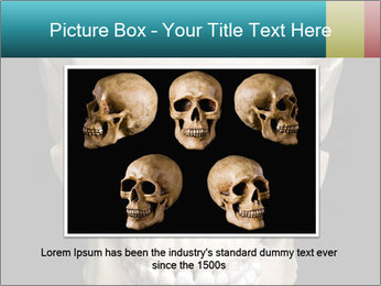 Real Model of Human Skull PowerPoint Templates - Slide 15