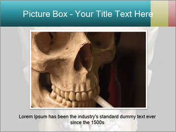 Real Model of Human Skull PowerPoint Templates - Slide 16