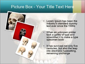 Real Model of Human Skull PowerPoint Templates - Slide 17