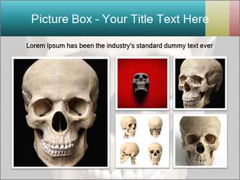Real Model of Human Skull PowerPoint Templates - Slide 19
