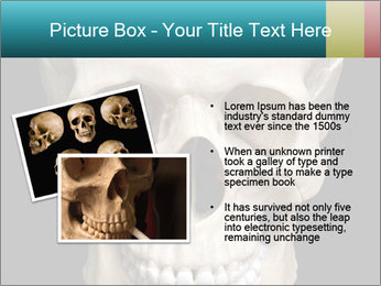 Real Model of Human Skull PowerPoint Templates - Slide 20