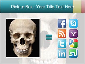 Real Model of Human Skull PowerPoint Templates - Slide 21