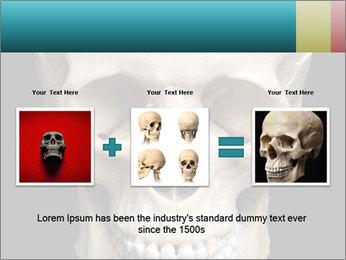 Real Model of Human Skull PowerPoint Templates - Slide 22