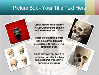 Real Model of Human Skull PowerPoint Templates - Slide 24