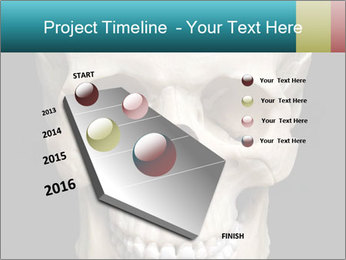 Real Model of Human Skull PowerPoint Templates - Slide 26