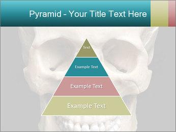 Real Model of Human Skull PowerPoint Templates - Slide 30