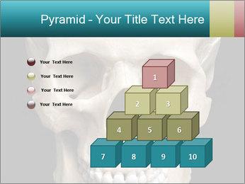 Real Model of Human Skull PowerPoint Templates - Slide 31