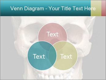 Real Model of Human Skull PowerPoint Templates - Slide 33