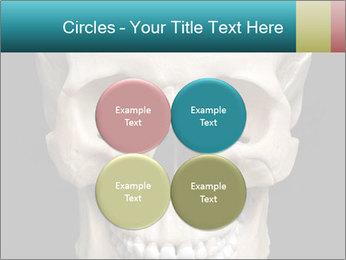 Real Model of Human Skull PowerPoint Templates - Slide 38