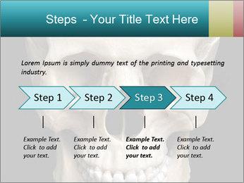 Real Model of Human Skull PowerPoint Templates - Slide 4
