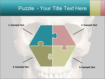 Real Model of Human Skull PowerPoint Templates - Slide 40