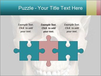 Real Model of Human Skull PowerPoint Templates - Slide 42