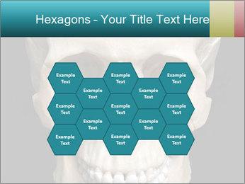 Real Model of Human Skull PowerPoint Templates - Slide 44