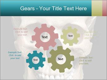 Real Model of Human Skull PowerPoint Templates - Slide 47