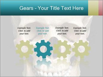 Real Model of Human Skull PowerPoint Templates - Slide 48