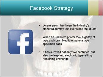 Real Model of Human Skull PowerPoint Templates - Slide 6