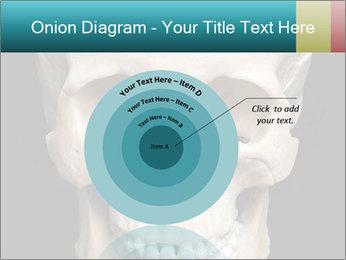 Real Model of Human Skull PowerPoint Templates - Slide 61