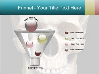 Real Model of Human Skull PowerPoint Templates - Slide 63