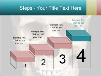Real Model of Human Skull PowerPoint Templates - Slide 64