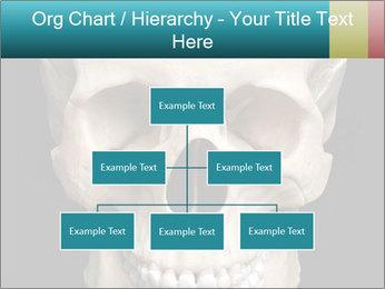 Real Model of Human Skull PowerPoint Templates - Slide 66