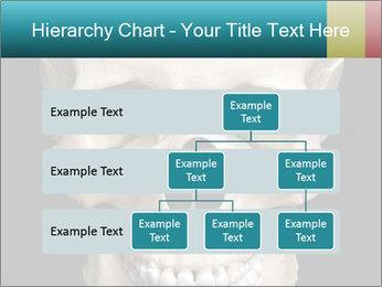 Real Model of Human Skull PowerPoint Templates - Slide 67