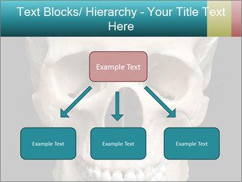 Real Model of Human Skull PowerPoint Templates - Slide 69