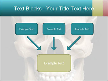 Real Model of Human Skull PowerPoint Templates - Slide 70