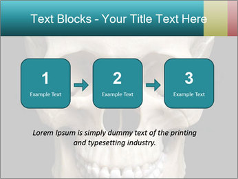 Real Model of Human Skull PowerPoint Templates - Slide 71