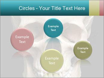 Real Model of Human Skull PowerPoint Templates - Slide 77