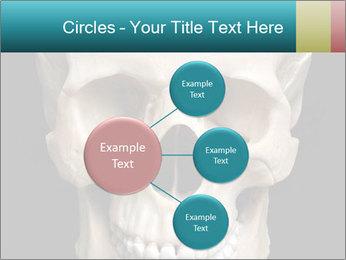 Real Model of Human Skull PowerPoint Templates - Slide 79