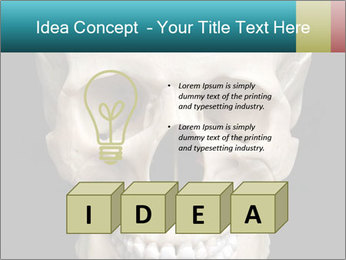 Real Model of Human Skull PowerPoint Templates - Slide 80