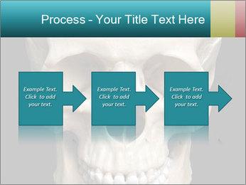 Real Model of Human Skull PowerPoint Templates - Slide 88