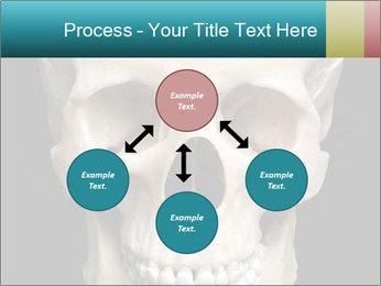 Real Model of Human Skull PowerPoint Templates - Slide 91