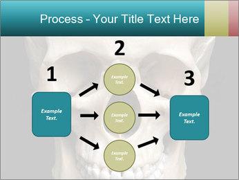 Real Model of Human Skull PowerPoint Templates - Slide 92