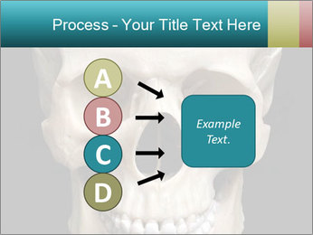 Real Model of Human Skull PowerPoint Templates - Slide 94