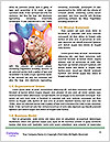 0000063378 Word Template - Page 4