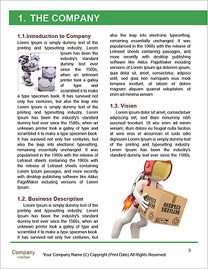 0000063380 Word Template - Page 3