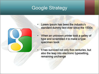Golden Fish with Unusual Ornament PowerPoint Template - Slide 10