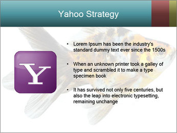 Golden Fish with Unusual Ornament PowerPoint Template - Slide 11