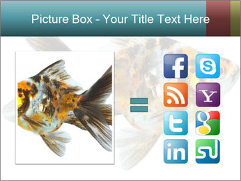 Golden Fish with Unusual Ornament PowerPoint Template - Slide 21